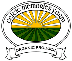 Celtic Memories Holidays